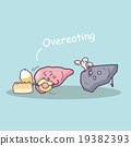 overeat damage liver 19382393