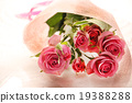 Roses Roses bouquet gifts gifts bouquet love proposal wedding peach color celebration rose 19388288