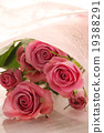 Roses Roses bouquet gifts gifts bouquet love proposal wedding peach color celebration rose 19388291