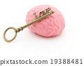 大腦 頭腦 鎖 19388481