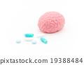 大腦 頭腦 內臟 19388484