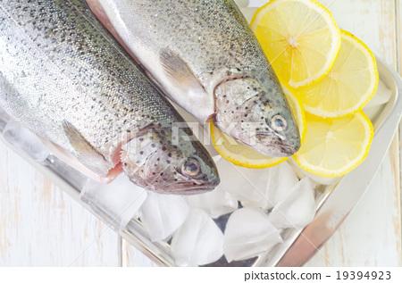 raw fish 19394923