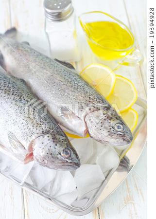 raw fish 19394928