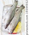 raw fish 19394932