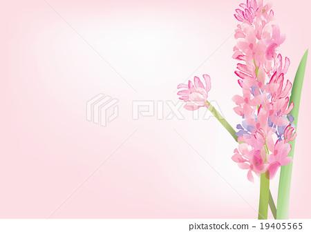 Hyacinth pink flowers on white backgroundvector stock hyacinth pink flowers on white backgroundvector mightylinksfo