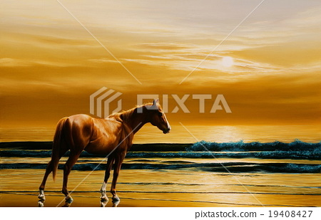 马 马儿 海滩 19408427