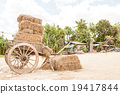 carriage and straw 19417844