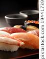 寿司 寿司球 和食 19441739