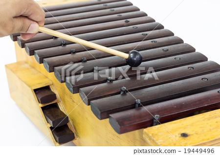 The xylophone 19449496