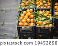 orange at market 19452898