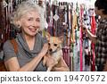 吉娃娃 女性 商店 19470572