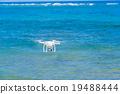 海 大海 海洋 19488444