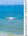 海 大海 海洋 19488447