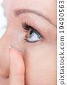 眼睛 目光 睫毛 19490563