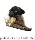 Pug dog ang a chick 19495263