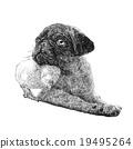 Pug dog ang a chick 19495264