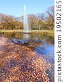 요요 기 공원의 단풍 19502165