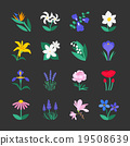 Famous Flower icons Set 2 19508639