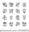 Famous Flower line icons Set 2 19508658