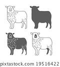 羊 綿羊 向量 19516422