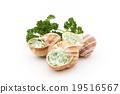 食用蝸牛 烹飪前 法語 19516567