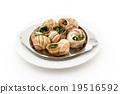食用蝸牛 蝸牛 法國食品 19516592