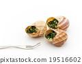 食用蝸牛 蝸牛 法國食品 19516602
