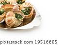 食用蝸牛 蝸牛 法國食品 19516605