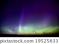 Northern Lights 19525633
