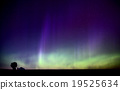 Northern Lights 19525634
