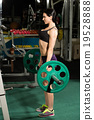 Brunette strong fitness sexy woman doing barbell 19528888