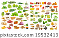 collection of food 19532413