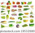 Vegetables collection isolated on white background 19532680