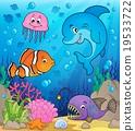 鱼 水生的 水下 19533722