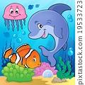 鱼 水生的 水下 19533723