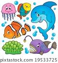 海洋 动物群 矢量 19533725