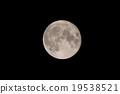 Moon 19538521