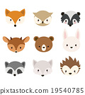Cute woodland animals collection 19540785