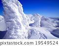 覆有霜的樹 冰霜覆蓋的樹木 太莫有時散 19549524