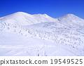 覆有霜的樹 冰霜覆蓋的樹木 雪山 19549525