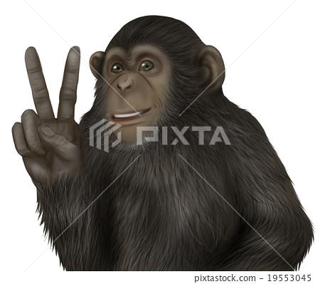 現實的黑猩猩插圖(和平標誌) 19553045