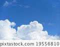 雲蓋 19556810