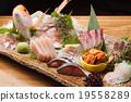 도미의 생선회 19558289