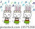 草裙舞 野兔 兔子 19575268
