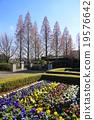ฤดูใบไม้ร่วง,แปลงดอกไม้,สวน 19576642