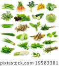 Vegetables collection isolated on white background 19583381