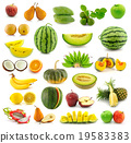 melon mango orange 19583383