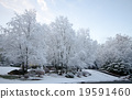 snow scene, snow, snowy 19591460