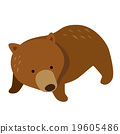 곰, 작은 곰, 새끼 곰 19605486