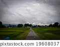 dark clouds, farm road, enviroment 19608037